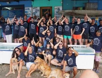 Shark Week Palau